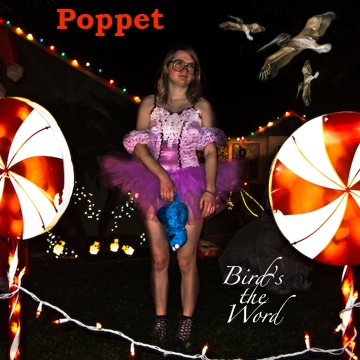 poppet birds the word